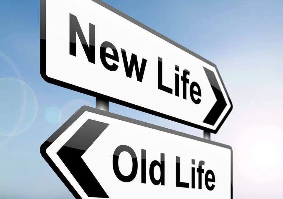 direction signs with words saying old life pointing in one direction and new life pointing in the opposite direction
